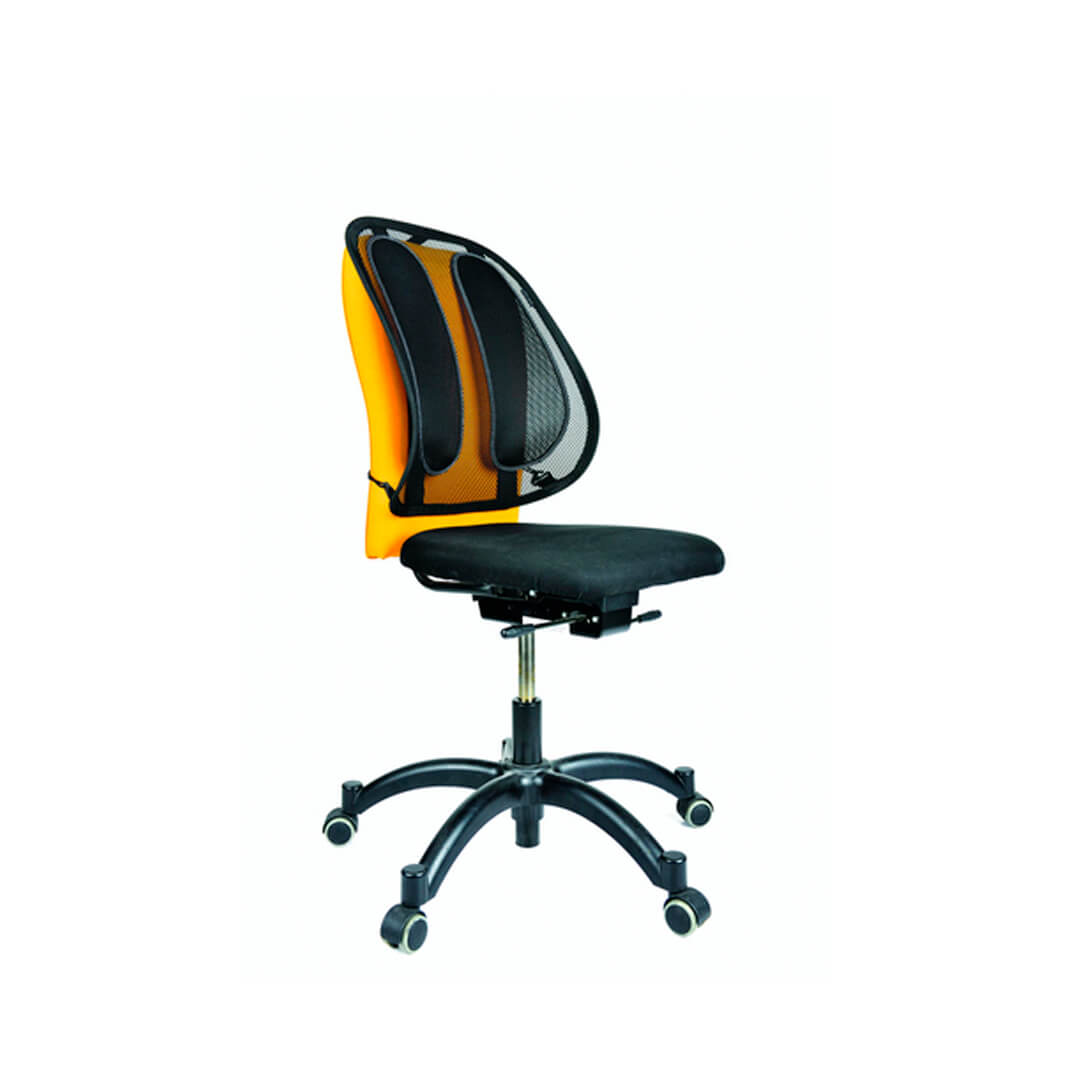 Respaldo ergonómico Fellowes Mesh Office Suites